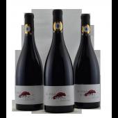 Les Vignerons de Cres Portiragnes In Vino Erotico Coteaux du Libron Rouge France 2017